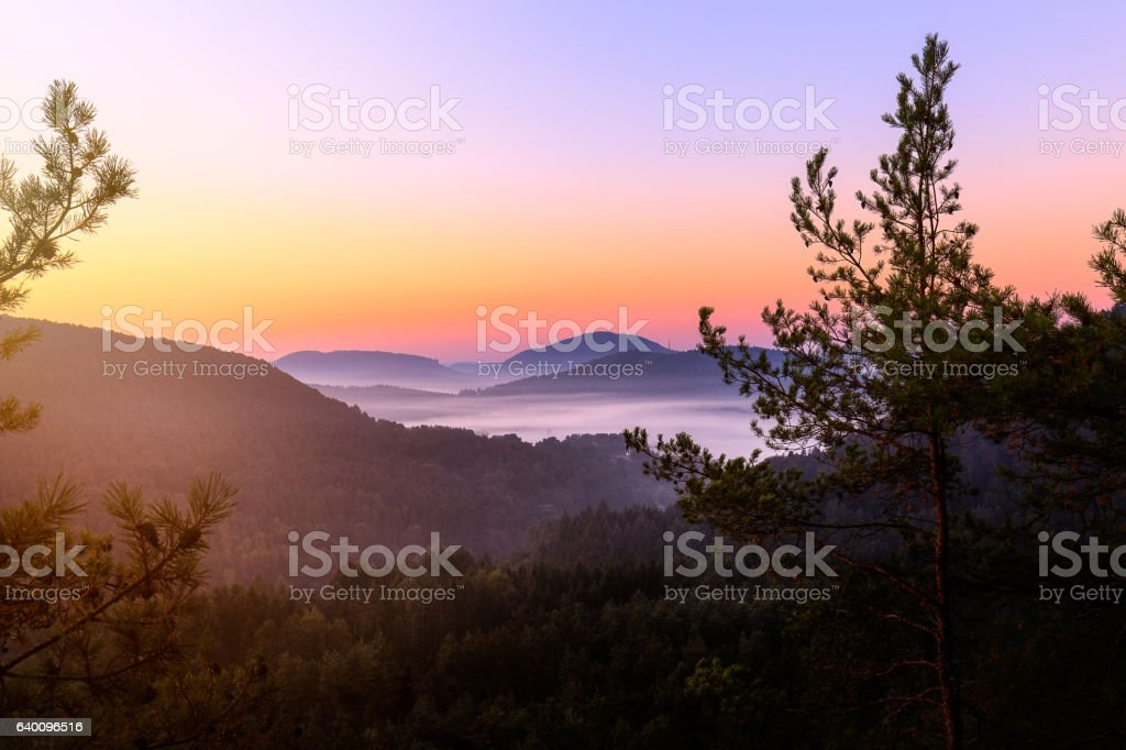 Sunrise in palatine forest stock photo