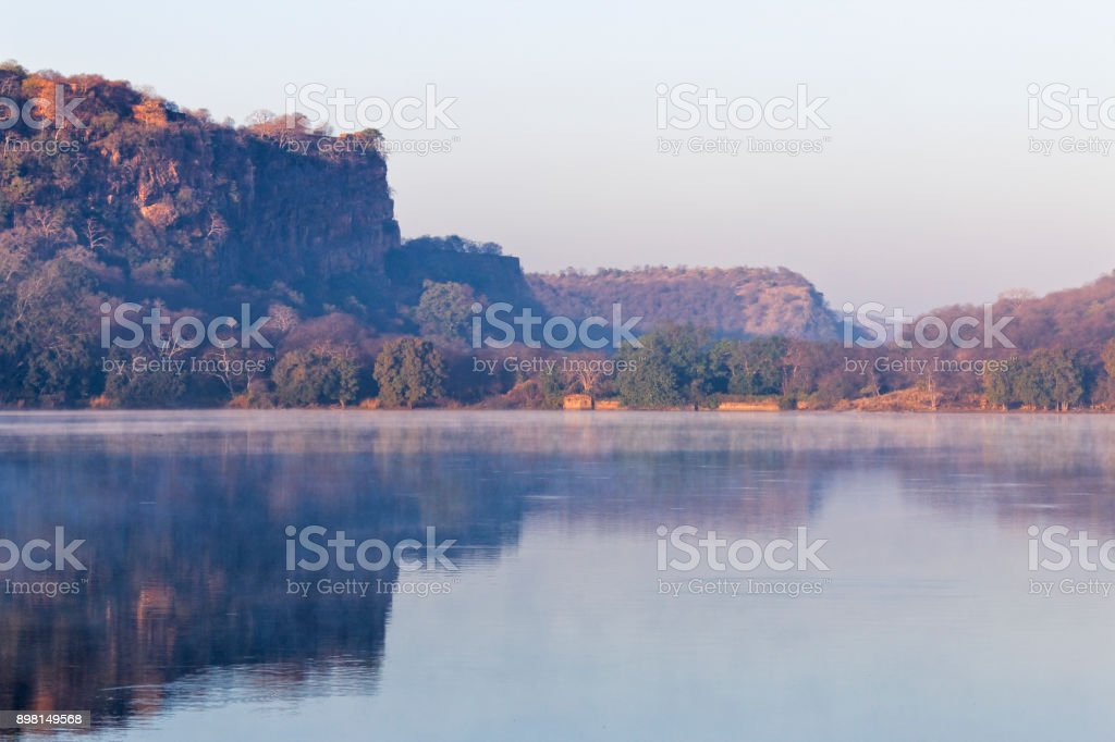 Sunrise in Ranthambore stock photo