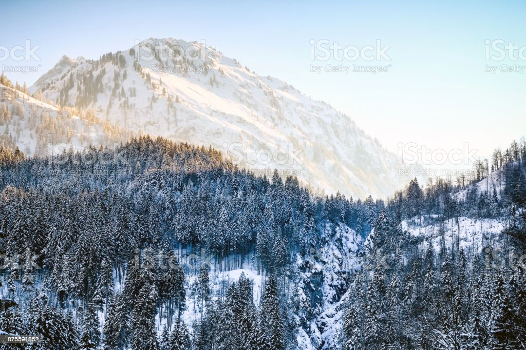 Sunrise in snowy winter mountains and woodland. Hintersteiner Tal, Allgau, Bavaria, Germany. stock photo