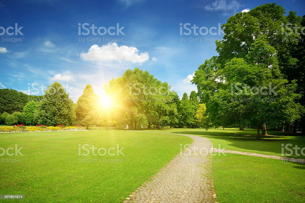 Sunrise in the beautiful park stock photo
