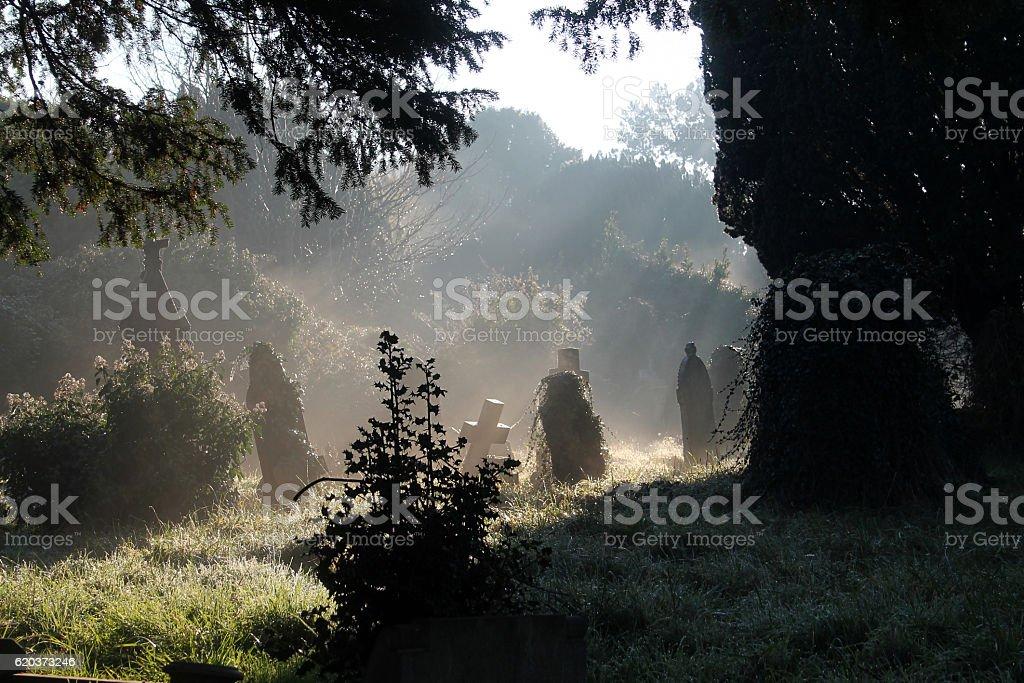 Sunrise In The Cemetery foto de stock royalty-free