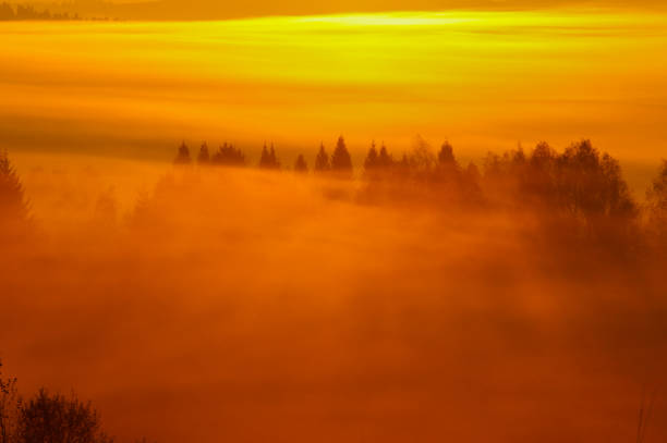 Sonnenaufgang in den Wald. Bieszczady-Gebirge. Polen – Foto