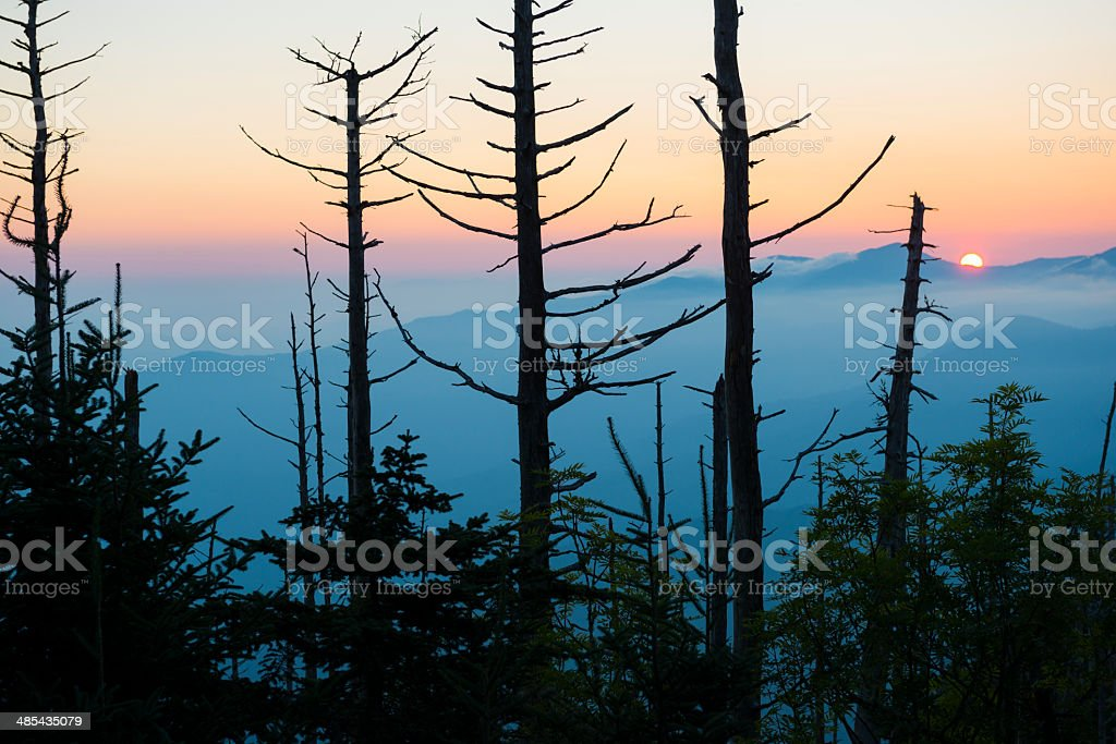 Sunrise in the Great Smoky Mountains National Park stock photo