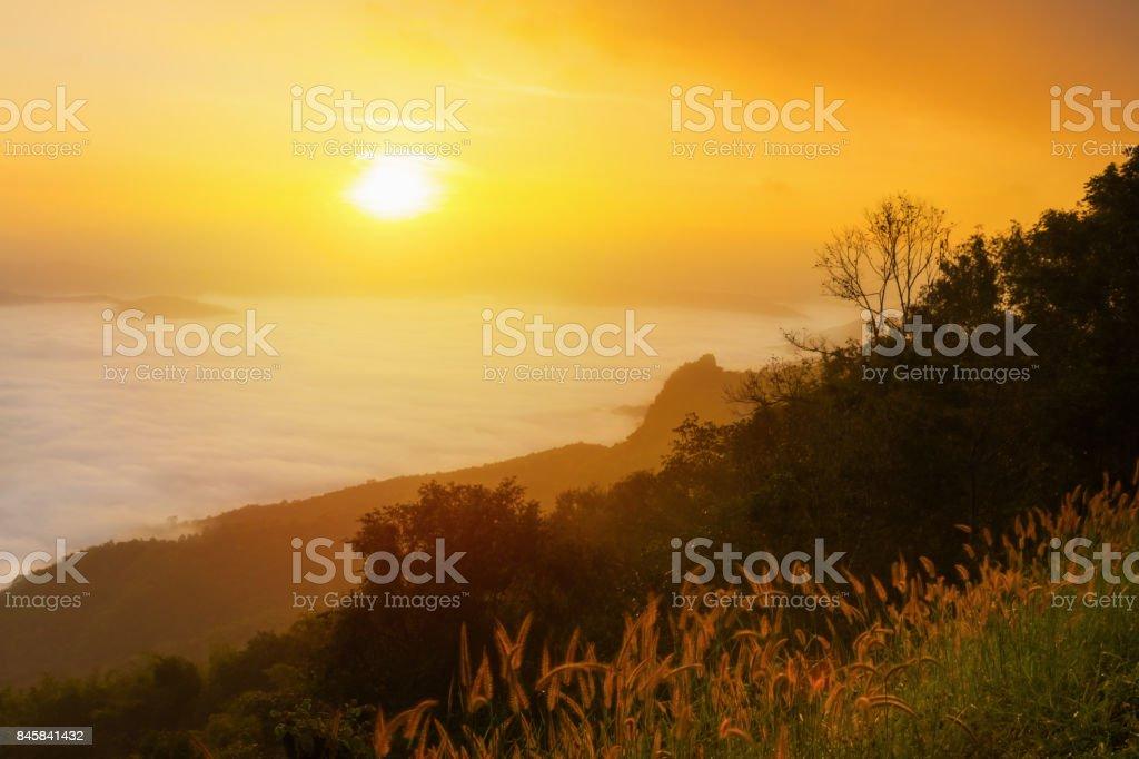Sunrise in the mist doi samoe dao Nan, Thailand. stock photo