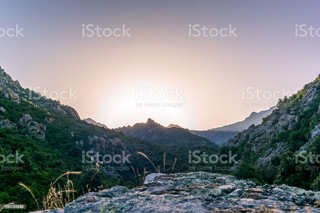 Sunrise in the mountains of Corsica royaltyfri bildbanksbilder