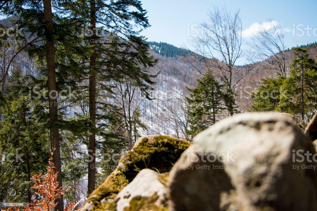 Sunrise in the mountains photo libre de droits