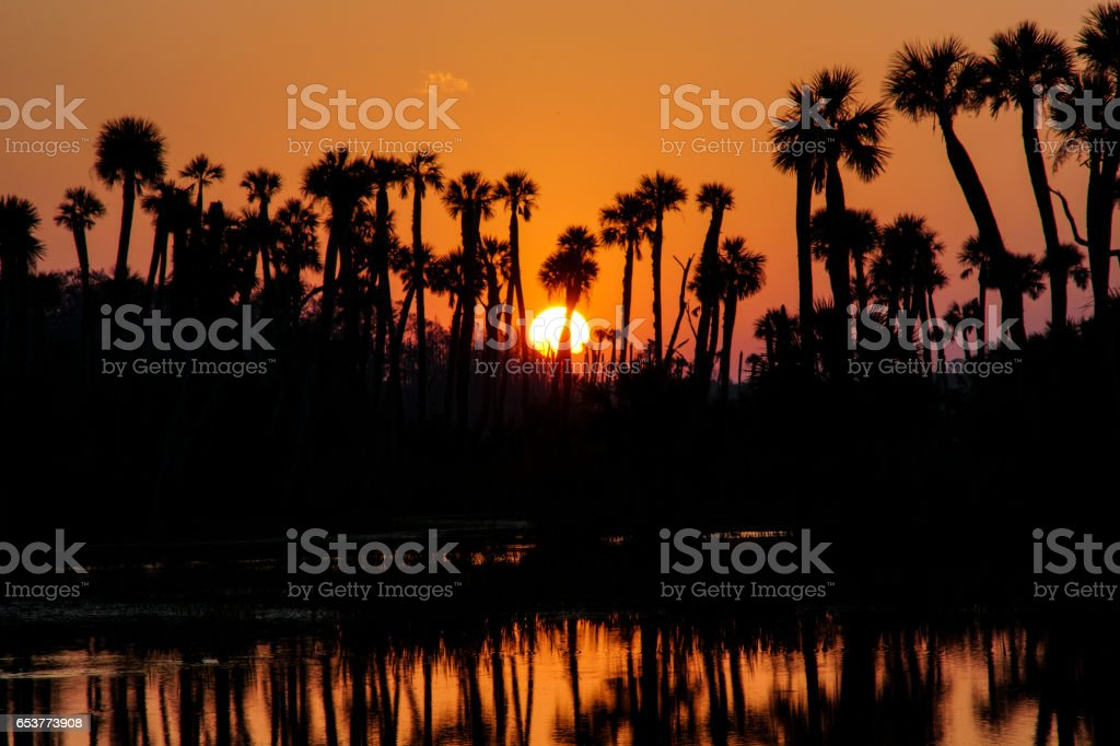Sunrise in the Orlando Wetlands Park in Florida stock photo