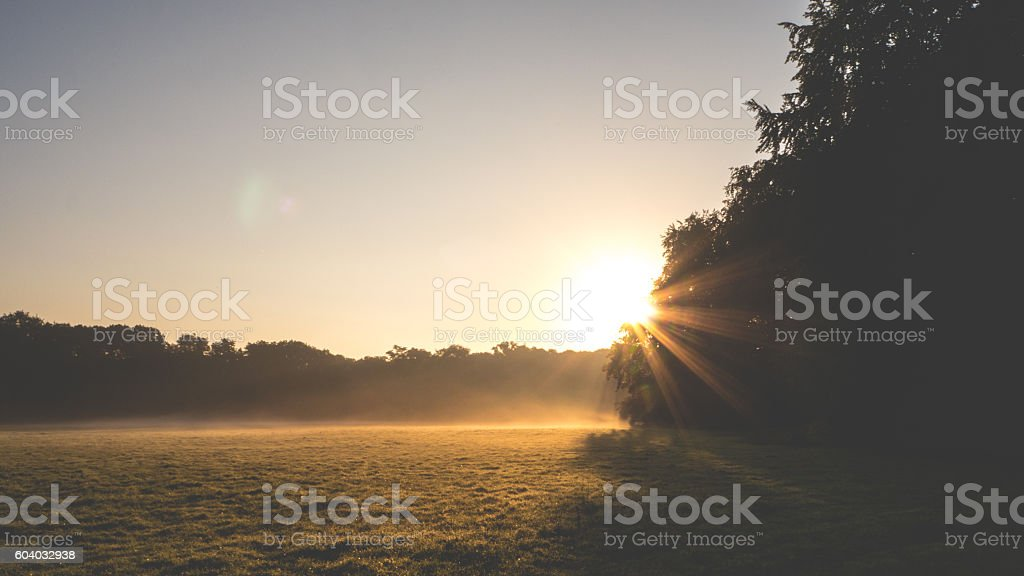 Sonnenaufgang in den park – Foto