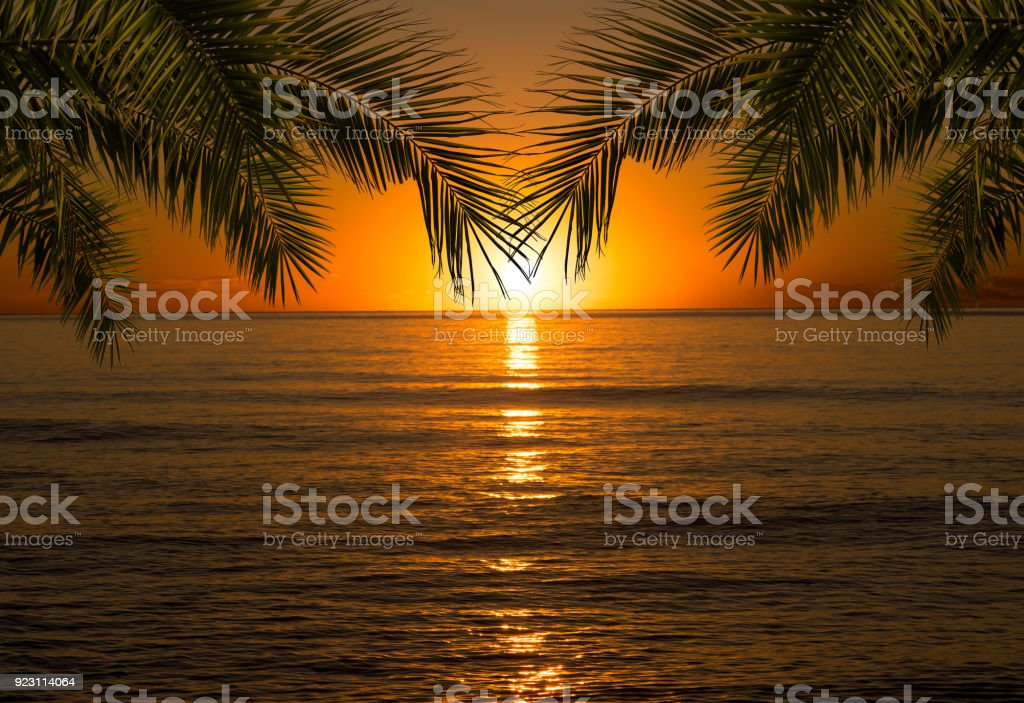 Sunrise In The Sea With A Framing Of Palm Leaves Stock Photo More