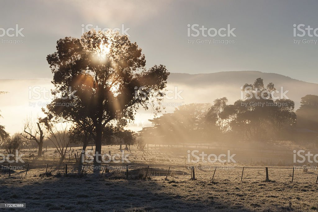 Sunrise In The Yarra Valley On a Winter's Day stock photo