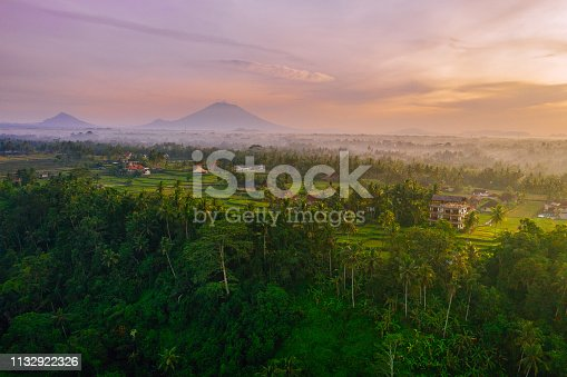 Sunrise scene - early morning in Ubud. Rice fields and tropical forest in a morning sun light, volcano Batur and mountains on the background.