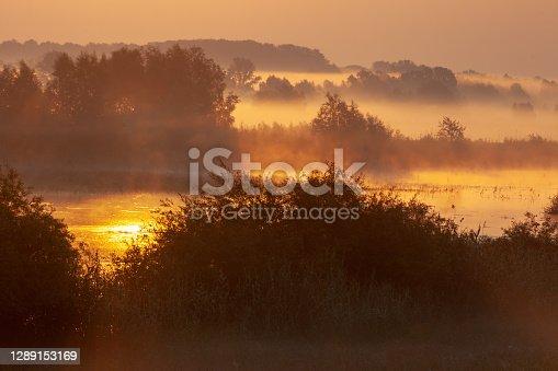 Sunrise in wetland, Kopacki rit, Croatia
