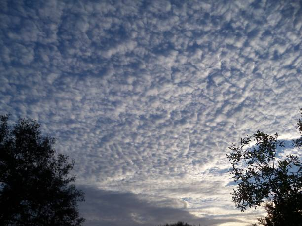 Sunrise lightens a mackerel sky stock photo