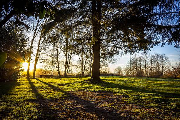 Sonnenaufgang von Derby – Foto