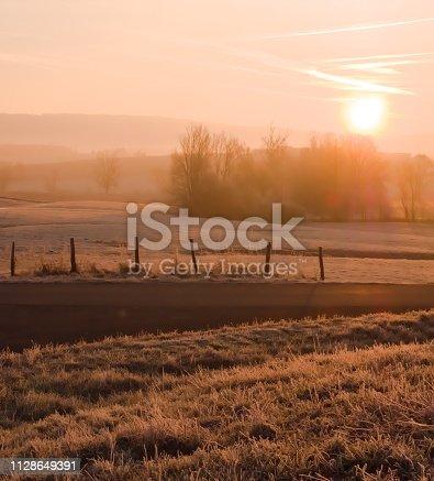 Bresse countryside, Rhône-Alpes, France