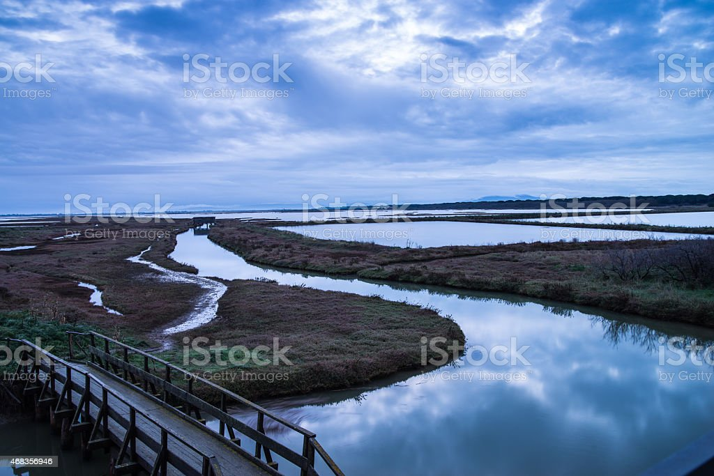 Sunrise on a natural oasis royalty-free stock photo