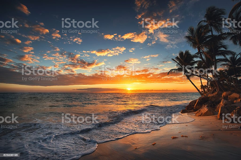Sunrise on a tropical island. Palm trees on sandy beach. stock photo