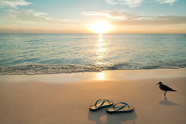 sonnenaufgang auf flip-flops am strand - salzwasser sandalen stock-fotos und bilder