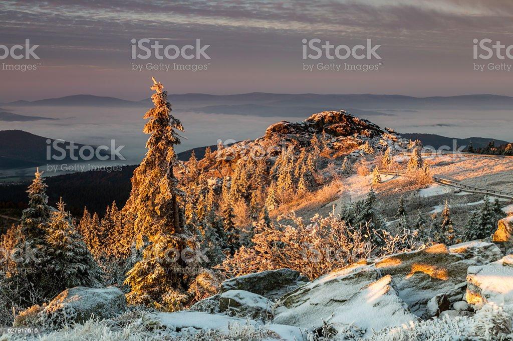 Sunrise on Great Arber mountain Sunrise on Great Arber mountain, Bavaria, Germany Bavaria Stock Photo