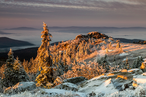 Sunrise On Great Arber Mountain Stock Photo - Download Image Now