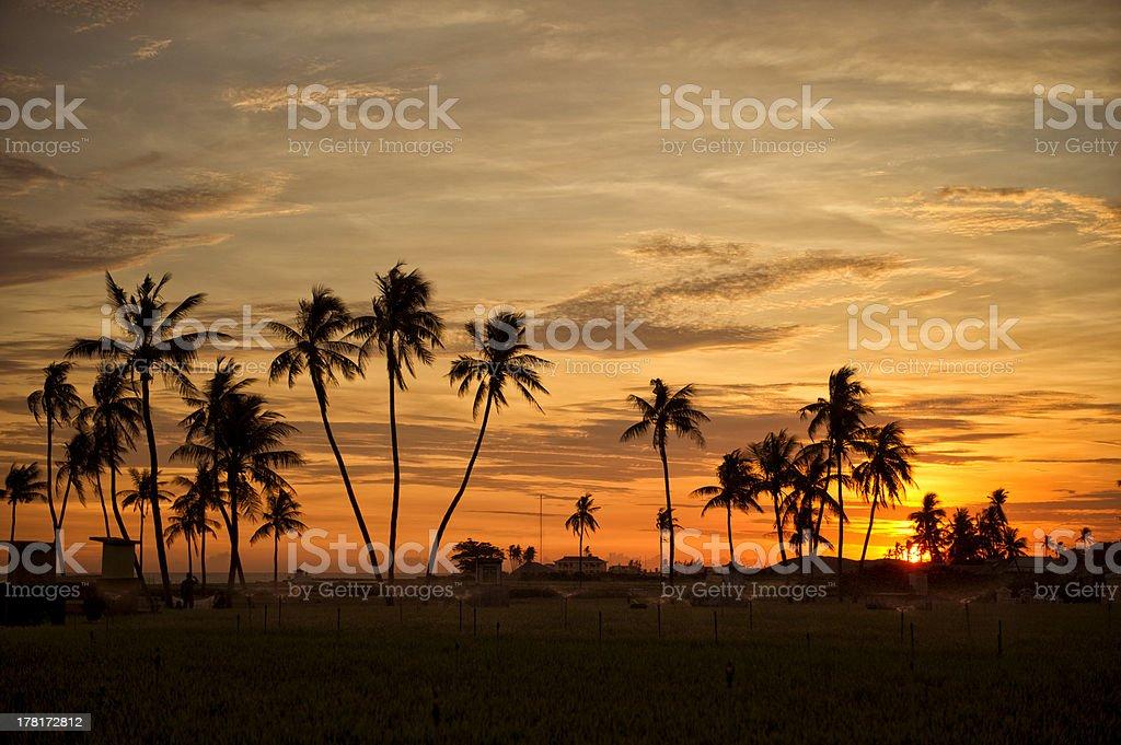 Sunrise on Lyson Island stock photo