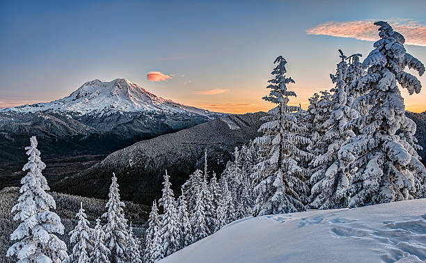 Sunrise on Snowy Mount Rainer in Cascade Mountains Snowshoe Tracks Suggest Adventure just as Sunrise Begins to Strike Mt. Rainier in Snowy Winter Mountain Scene. mt rainier stock pictures, royalty-free photos & images