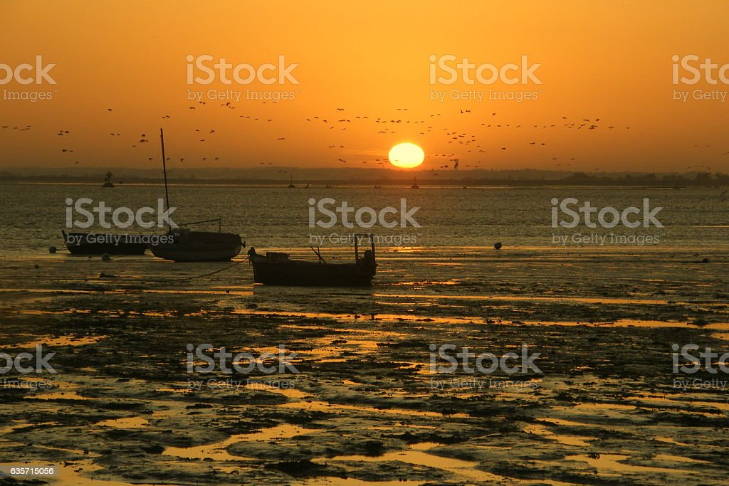 Sunrise on the island of Noirmoutier royalty-free stock photo