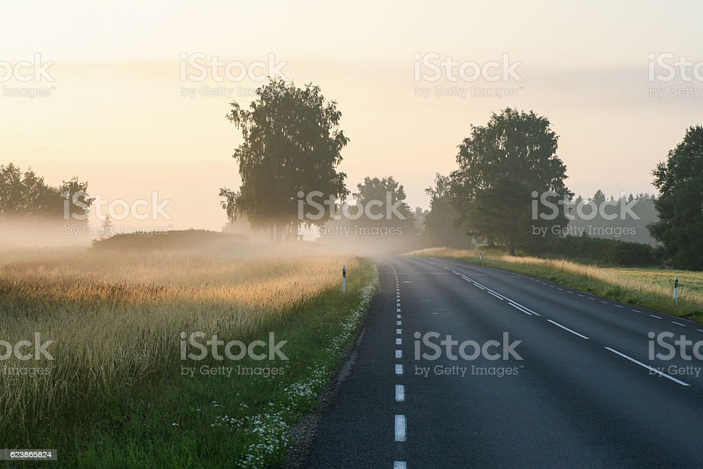 Sunrise on the motorway on a foggy countryside morning – Foto