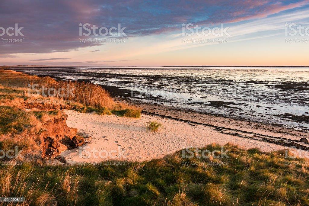 Sunrise on the North Sea coast on the island Amrum – Foto