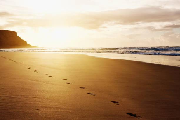 sonnenaufgang oder sonnenuntergang zeigt spuren von einem einsamen strand buggy - fußspuren stock-fotos und bilder