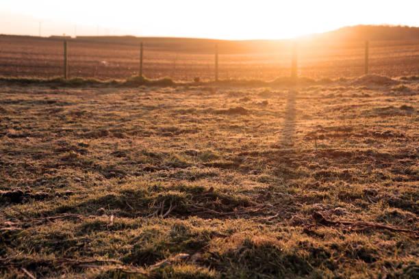 Sunrise over a frosty field stock photo