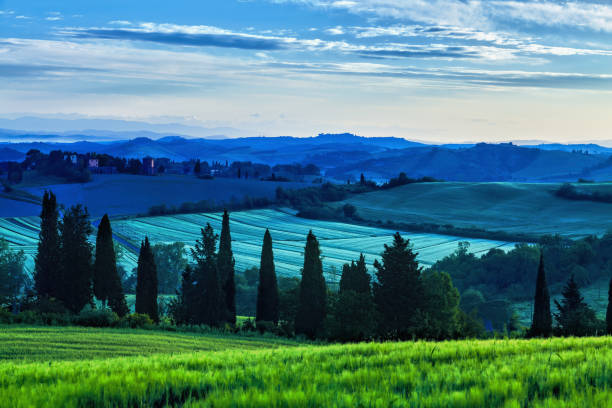 Sunrise over curvy hills in Tuscany stock photo