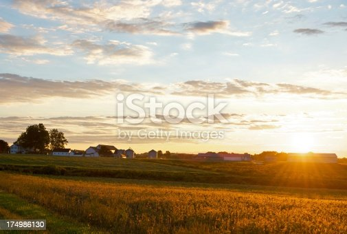 sunrise over farm in New Jersey with some lens flare.
