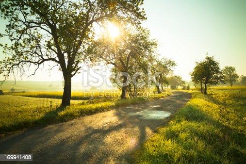 istock Sunrise over fields 169941408