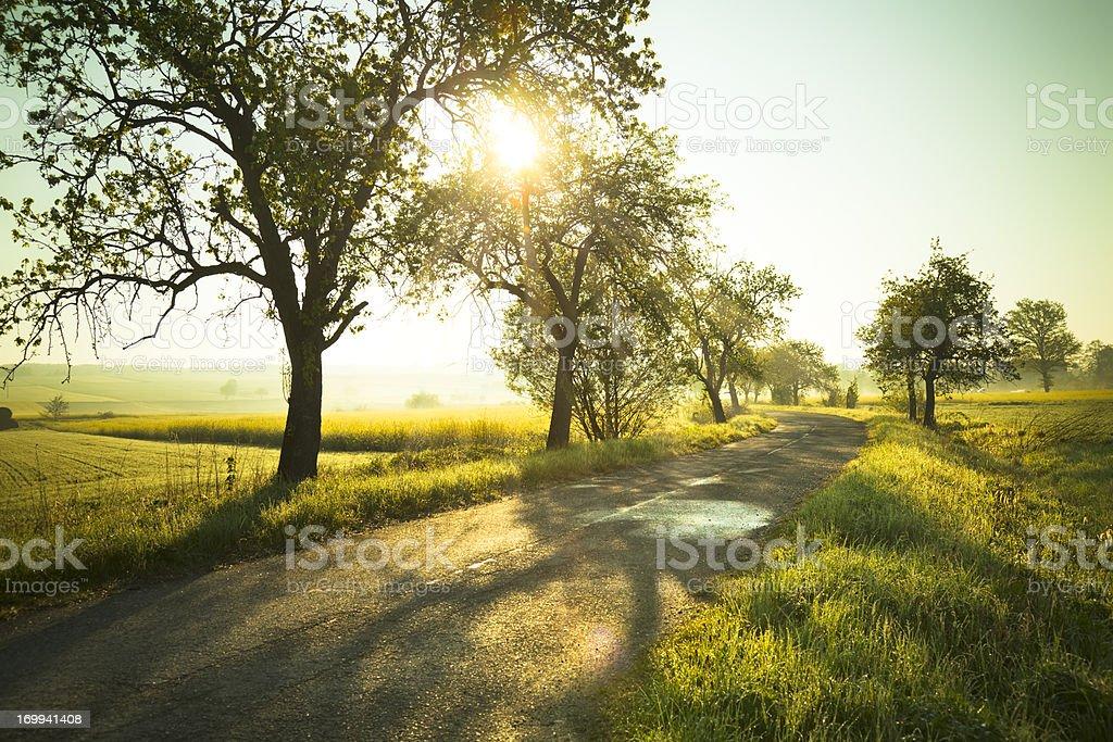 Sunrise over fields stock photo