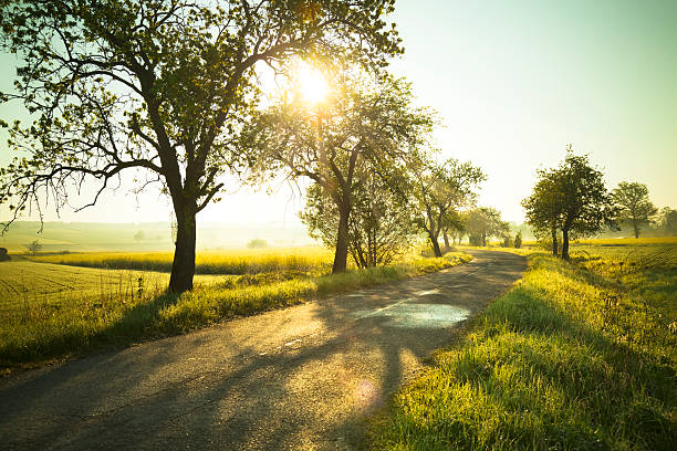 Sunrise over fields Sunrise over fields and country road. eastern europe stock pictures, royalty-free photos & images