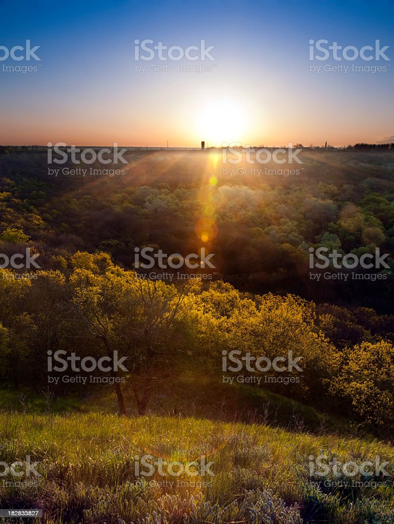 Sunrise over forest royalty-free stock photo