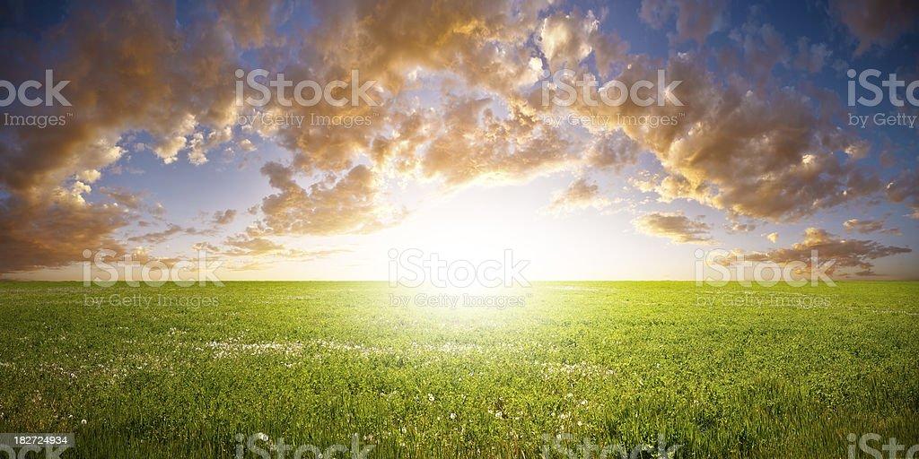 Sunrise over Green Field stock photo
