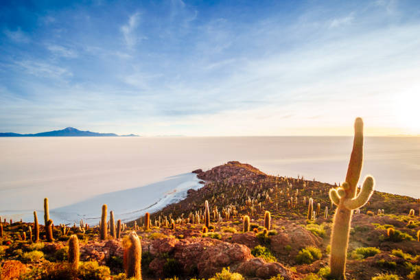 incahuasi 的日出在海島烏尤尼在玻利維亞的鹽湖 - 阿爾蒂普拉諾山脈 個照片及圖片檔