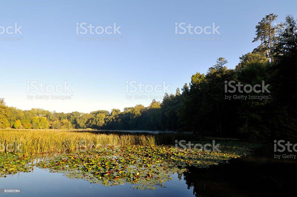 Sunrise over lake royalty-free stock photo