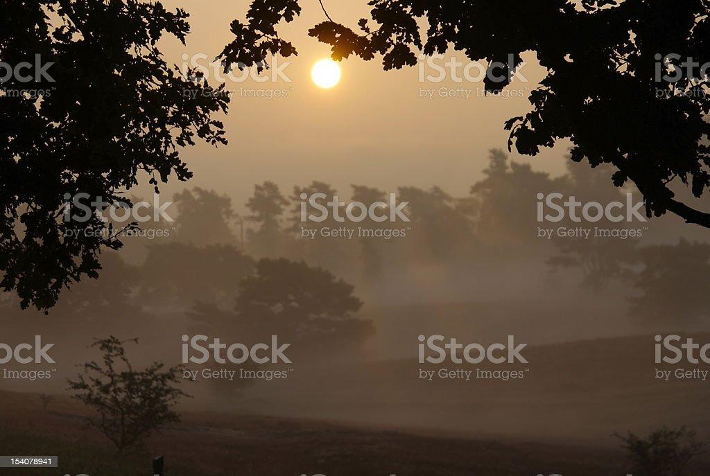 Sunrise over Moor royalty-free stock photo