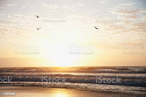 Sunrise over ocean picture id116378460?b=1&k=6&m=116378460&s=612x612&h=a1u025vebygf9frgahokkdy5lccqpmkwwe7kwtg3vjk=