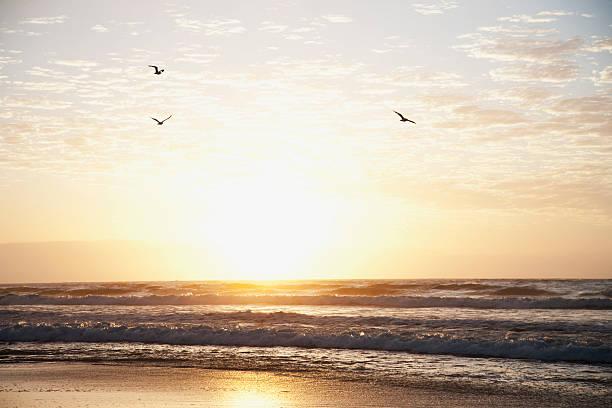Sunrise over ocean picture id116378460?b=1&k=6&m=116378460&s=612x612&w=0&h=gr49xvvqfgnrqy0jwjokmrqy7438rio6ekcy3eb8sc4=