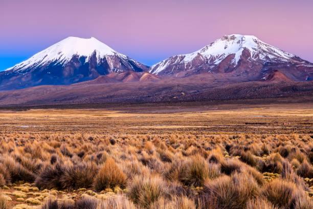 玻利維亞 sajama 國家公園 parinacota 火山日出 - 阿爾蒂普拉諾山脈 個照片及圖片檔