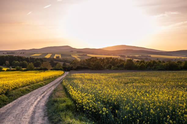 Sunrise over Sleza hill stock photo
