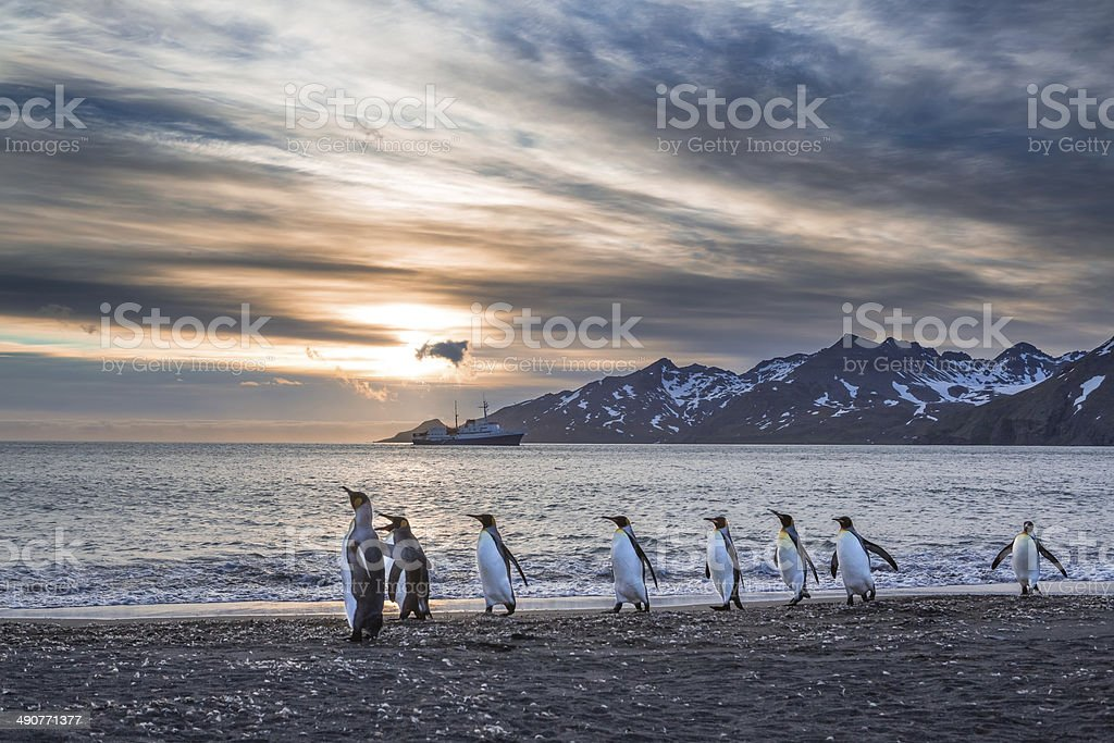 Sunrise over St Andrews Bay in South Georgia stock photo