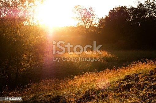 Rural sunrise over Texas pasture during fall season.