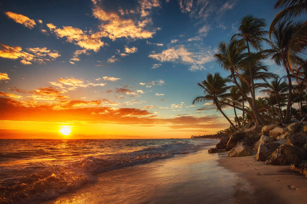 sunrise over the beach - caribbean culture stock pictures, royalty-free photos & images