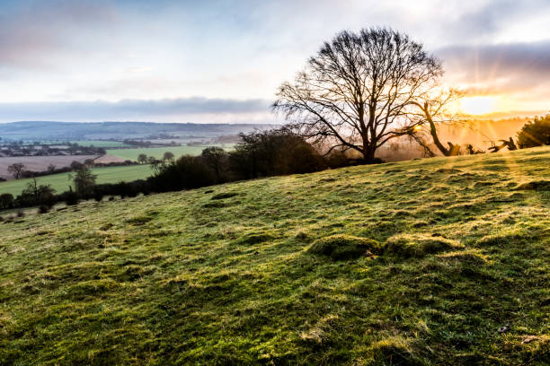 Sunrise Over the Beacon the early, winter, morning sun spreads its rays across the fields surrounding ivinghoe beacon buckinghamshire stock pictures, royalty-free photos & images