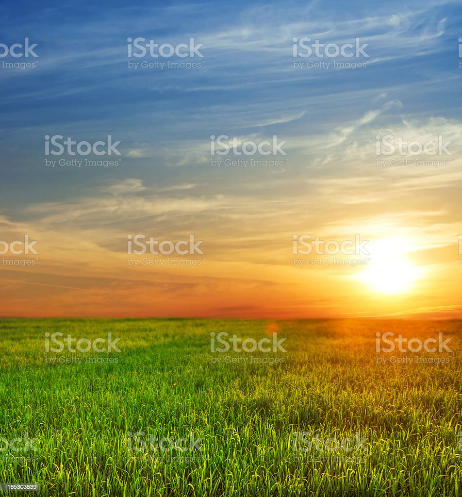 Sunrise Over The Fields stock photo